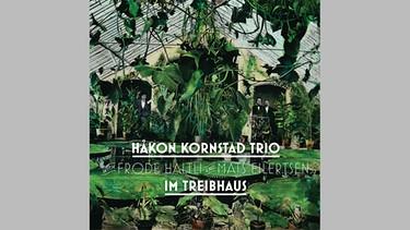 "CD-Cover Håkon Kornstad Trio: ""Im Treibhaus"" | Bild: Grappa"