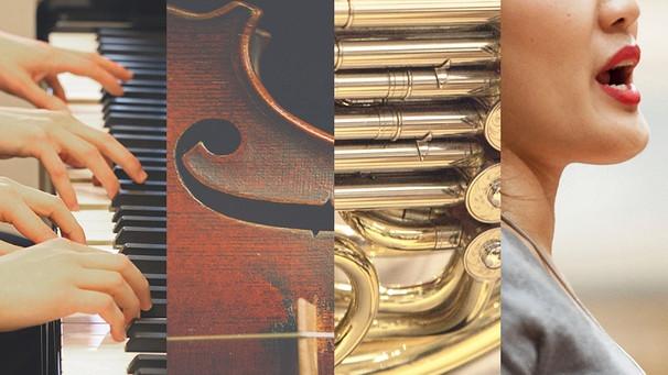 ARD Musikwettbewerb 2021 - Klavierduo, Violine, Horn, Gesang | Bild: picture-alliance/dpa, Johanna Vogt-Pexels, Daniel Delang, Montage BR